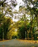 aadu oru bheekara jeeviyanu
