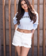 nabha natesh latest photoshoot pics