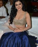 Malvika Sharma at Nela Ticket audio release