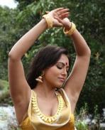 Gajjala Gurram 4
