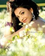 my fav. kajal aggarwal,s pics