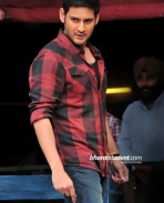 Mahesh babu fan
