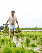 Kadai Kutty Singam Latest Photos