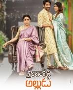 Shailaja Reddy Alludu first look poster
