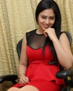 Nikeesha Patel latest photos