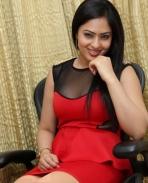 Nikeesha Patel latest photos