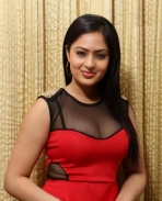 Nikesha Patel Latest Photos