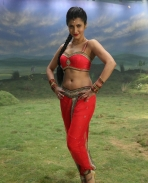 Shruti Latest hot