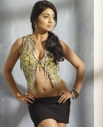 shriya saran hot photos