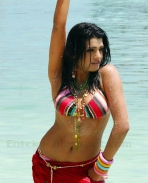 Tashu Kaushik hot photos