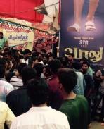 Vaalu Fans Celebrations