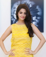 Vedhika Actress Photos