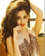 Vedhika Actress Photos