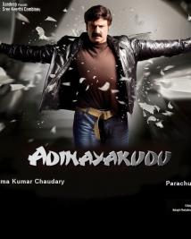 adinayakudu fans posters