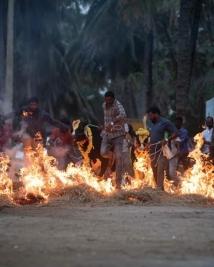 darshan sankranti celebration pics