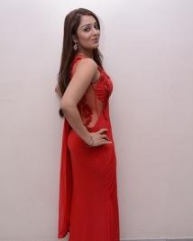 Nikitha Red Hot photos