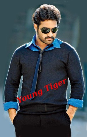 Tollywood Tiger