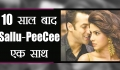 Salman Khan To Work With Priyanka Chopra In Bharat After 10 Years