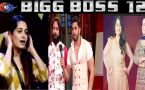 Bigg Boss 12: Know who will be ELIMINATED according to VOTING Trends