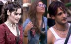 Bigg Boss 13: Siddharth, Mahira's mother & family members of these contestants will enter