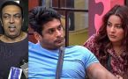 Bigg  Boss 13: Vindu Dara Singh reveals Siddharth Shukla & Shehnaz Gill's break up reason