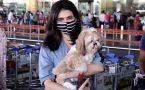 Karishma Tanna with her Pet Dog Spotted at Airport