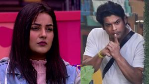 Bigg Boss 13: Siddharth Shukla compares Shehnaz to cigarette