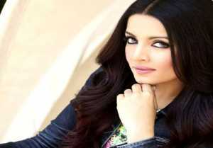 Celina Jaitly pregnant with twins again