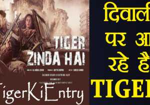 Salman Khan Tiger Zinda Hai TRAILER release in November, POSTER out on Diwali