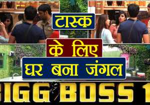Bigg Boss 11: Luxury Budget task to divide house in 2 teams; Here are details