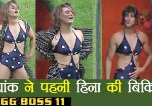 Bigg Boss 11: Priyank Sharma WEARS Hina Khan's BIKINI during LUXURY budget task