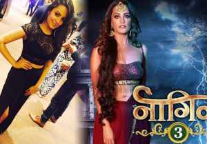 Naagin 3 Actress Anita Hassanandani Reveals Major Secret Of Her Life; Find Out Here
