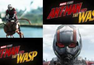 AntMan and The Wasp First Day Box Office Collection: Paul Rudd  Avengers  Marvel  FilmiBeat