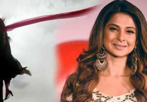 Kasauti Zindagi Kay: Jennifer Winget opens up on Erica & Parth Samthaan's show। FilmiBeat