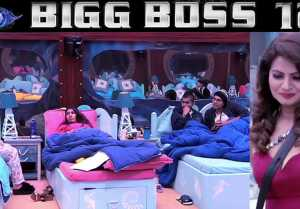 Bigg Boss 12: Megha Dhade's Divide & Rule strategy creating chaos among housemates