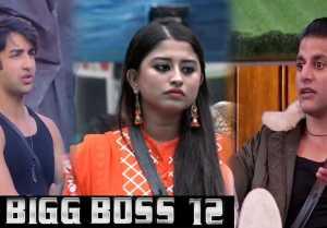 Bigg Boss 12: Karanvir Bohra, Somi Khan, Rohit Suchanti who will evict this week