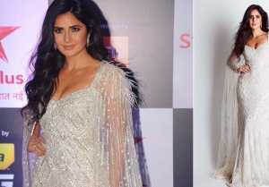 Katrina Kaif looks stunning in shimmery gown at Star Screen Award 2018