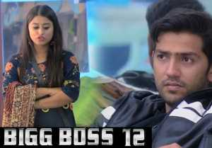 Bigg Boss 12: Somi Khan TARGETS Romil Chaudhary for Kalkotri; Here's Why