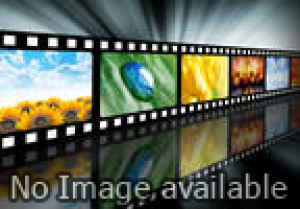 Salman Khan and Other TOP 10 Most Happy Bachelors of Bollywood