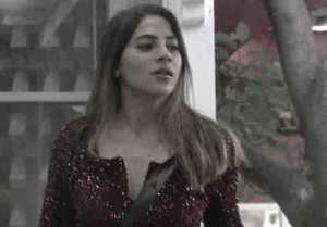Bigg Boss 14 Promo: Kavita Kaushik & Rahul's dirty fight;  Aly angry on Nikki