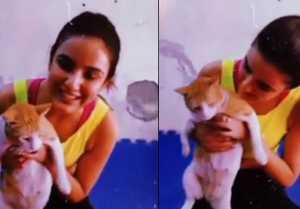 Bigg Bo 14; Jasmin Bhain's play with street cat, Watch cute video