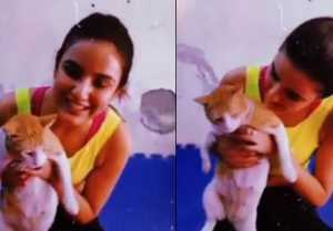 Bigg Bo 14; Jasmin Bhain's play with street cat, Watch cute video
