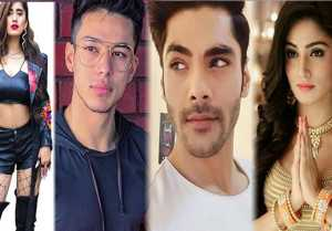 Bigg Boss 15: Contestant List which is Almost Confirmed watchout the video