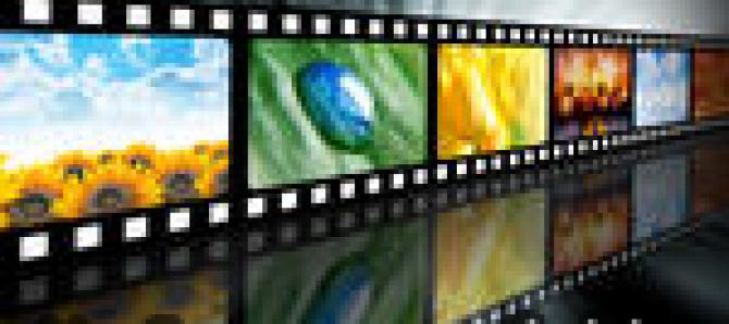 Sarkar 3 Official Trailer 2