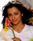 திரிஷா கிருஷ்ணன்