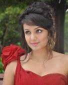 தேஜஸ்வி மடிவாலா