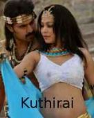 Kuthirai