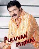 Puluvan Mathayi