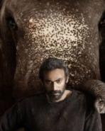 हाथी मेरे साथी