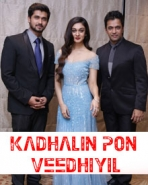 Kadhalin Pon Veedhiyil